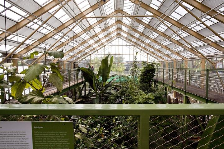 Botanische Tuin Leiden : Staalmakers